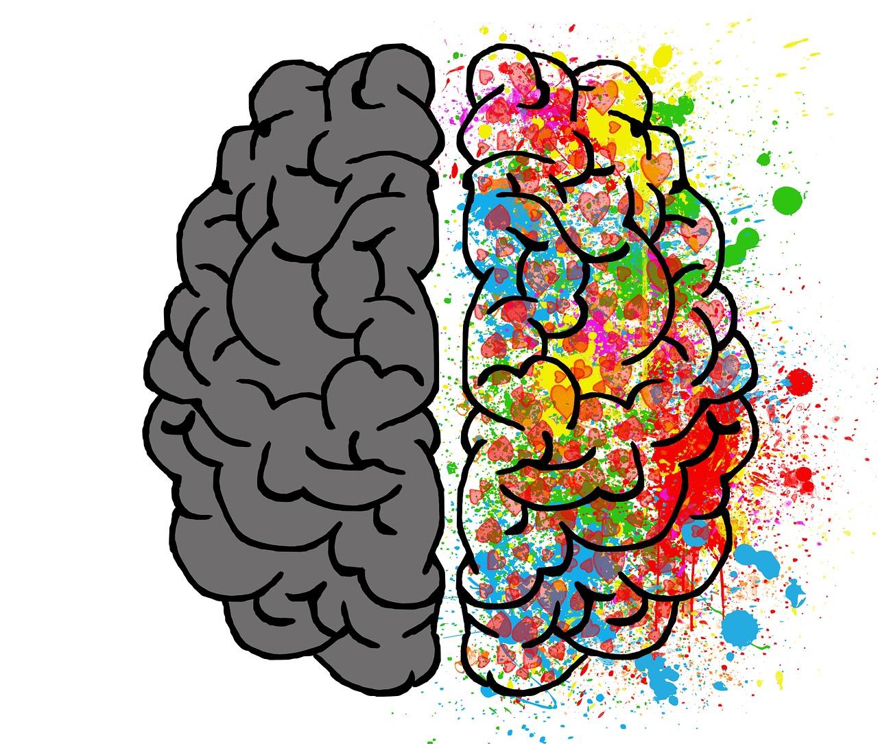 zdrowie psychiczne - lewa i prawa półkula mózgu